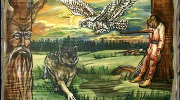 Wolf and gyrfalcon